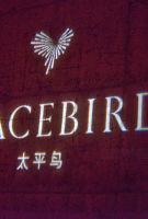 太平鸟全年净赚5.71亿元创纪录 电商表现低迷